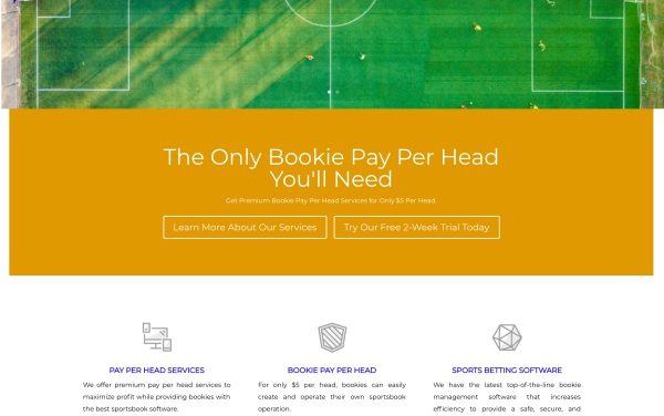 EasyPayPerHead.com Sportsbook Pay Per Head Review