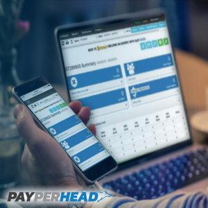 PayPerHead's unique value proposition