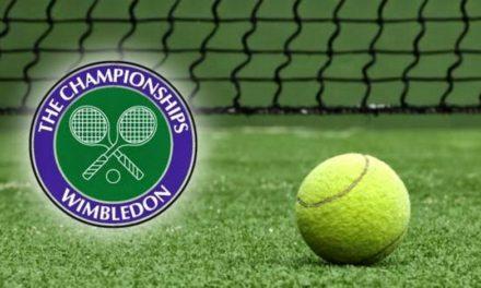 2015 Wimbledon Betting Preview