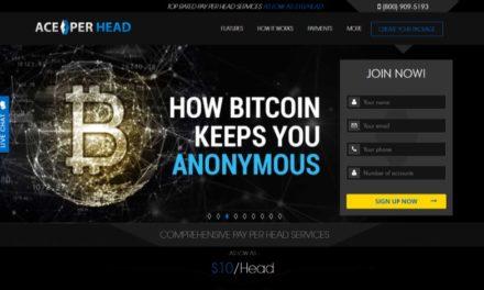 AcePerHead Sportsbook Pay Per Head Review