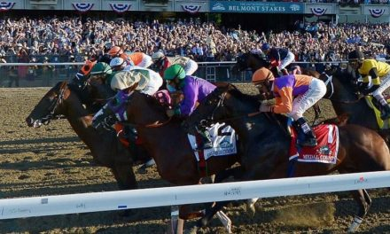Choose Your Bet: A Definitive Betting Guide to the Belmont Stakes