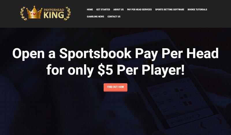 PayPerHeadKing.com Sportsbook Pay Per Head Review