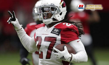 NFL Betting Guide for Beginners